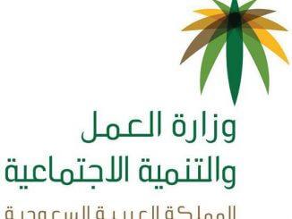 كيفية الاستعلام عن موظف سعودي من خلال رقم الهوية للتأمينات عبر موقع وزارة العمل